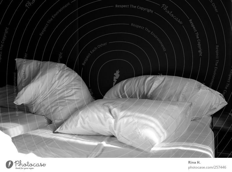 Rise and shine! Bed Bedclothes Cushion Pillow Relaxation Sleep Living or residing Black White Joie de vivre (Vitality) Calm Black & white photo Interior shot