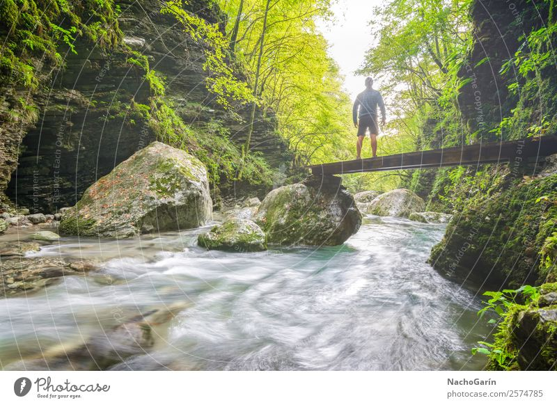 Follow the light Vacation & Travel Adventure Freedom Hiking Jogging Man Adults 1 Human being Environment Nature Landscape Plant Water Sunlight Tree Bushes Moss