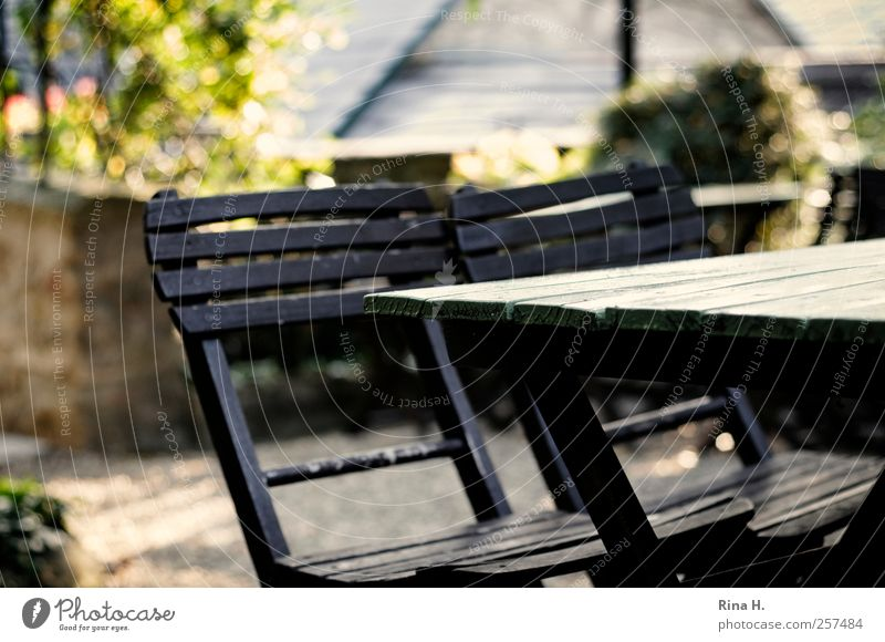 Bright Wait Natural Authentic Joie de vivre (Vitality) Cozy Terrace Safety (feeling of) Wooden table Garden chair Seasonal winery