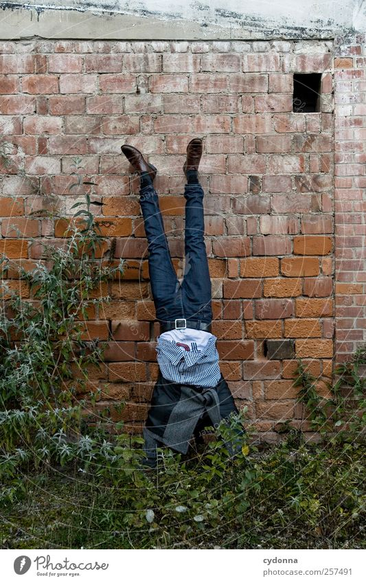 Human being Man Nature Joy Adults Environment Life Meadow Wall (building) Wall (barrier) Style Elegant Adventure Lifestyle Uniqueness Jeans