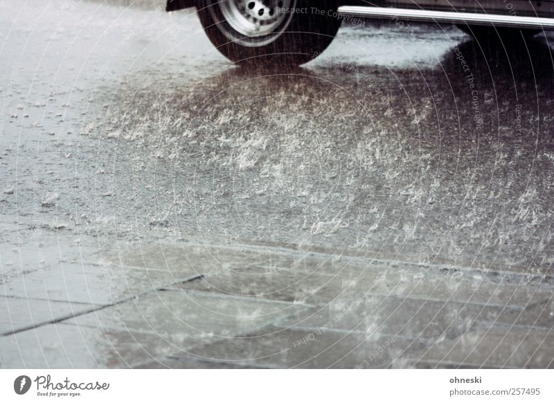 Happy New Year Water Weather Bad weather Rain Transport Motoring Street Sidewalk Car Climate Tire Wet Colour photo Subdued colour Exterior shot