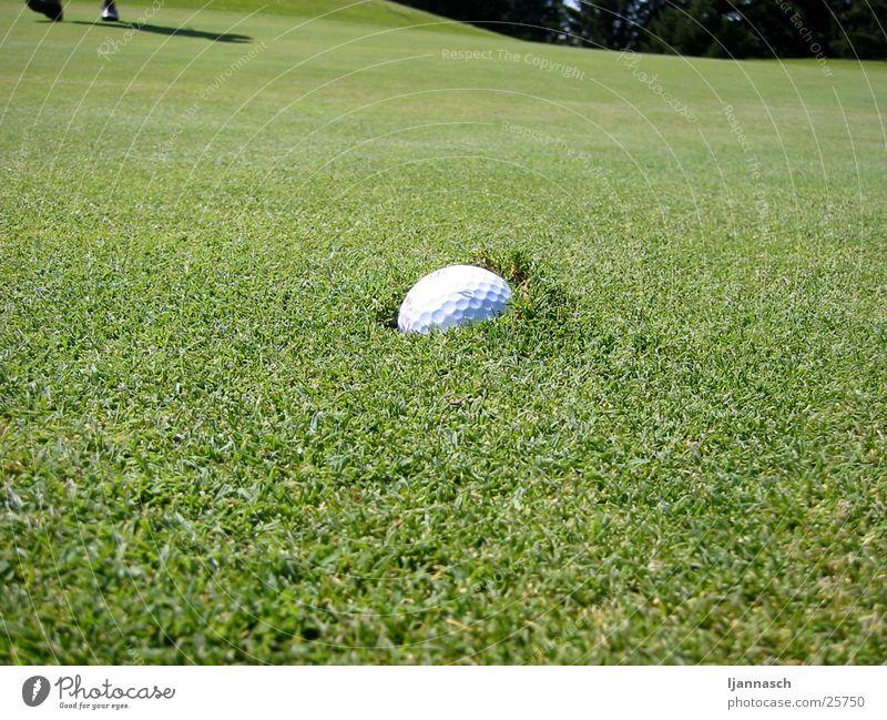 Sports Grass Golf Golf ball