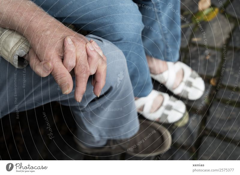 interlocking hands of woman and man lie on one knee by hand Human being Woman Adults Man Family & Relations Couple Partner Senior citizen Fingers Legs Knee 2