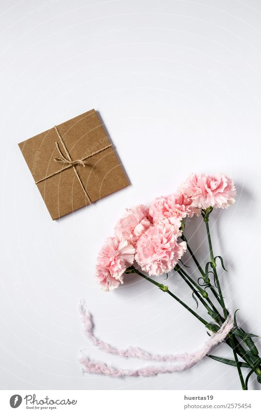 Gift box with string Flower Eroticism Love Style Feasts & Celebrations Copy Space Pink Above Elegant Birthday Romance Shopping Rope Surprise Festive