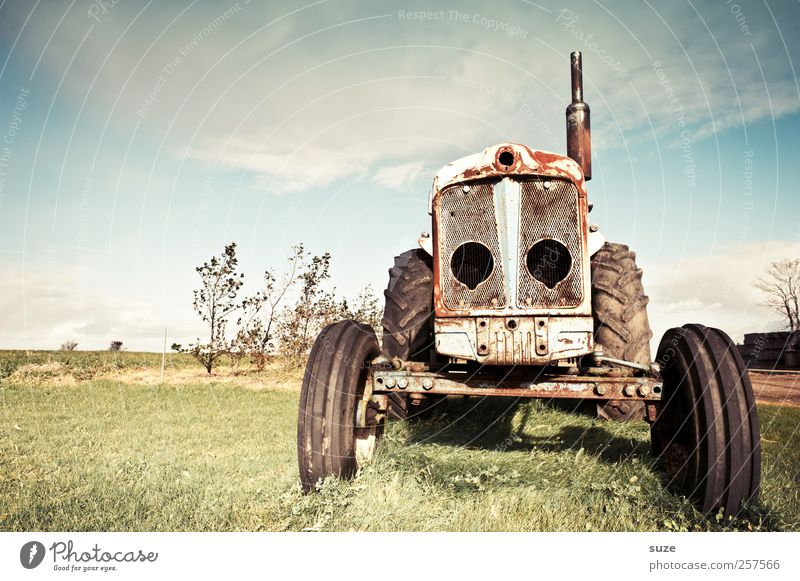 dregga Agriculture Forestry Environment Nature Sky Beautiful weather Meadow Tractor Rust Old Dirty Broken Transience Country life Vehicle Rubber tires Equipment