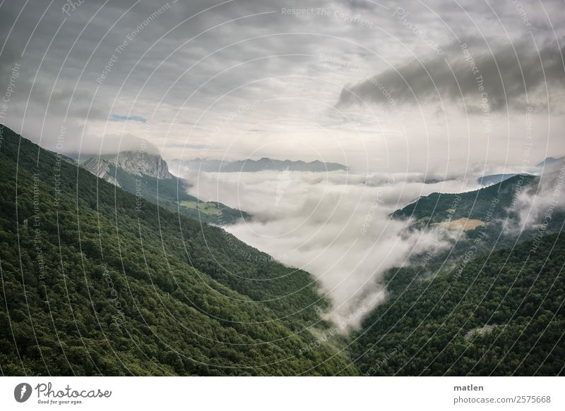 blanket of clouds Environment Nature Landscape Plant Sky Clouds Horizon Summer Bad weather Tree Forest Hill Rock Mountain Peak Dark Gray Green Pyrenees