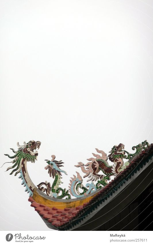 Druffn Dragonfavors Work of art Religion and faith Buddhism Nepal Sky Vietnam Asia Lumbini Temple Roof Flying Scream Far-off places Multicoloured Gray
