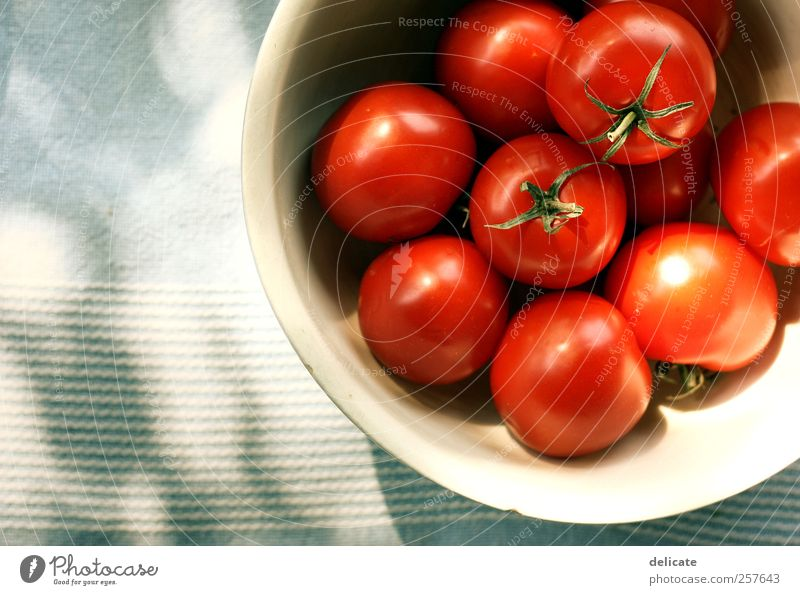 tomatoes Food Vegetable Soup Stew Nutrition Lunch Dinner Organic produce Vegetarian diet Crockery Bowl Nature Blue Green Red Tomato Tomato salad Tomato juice