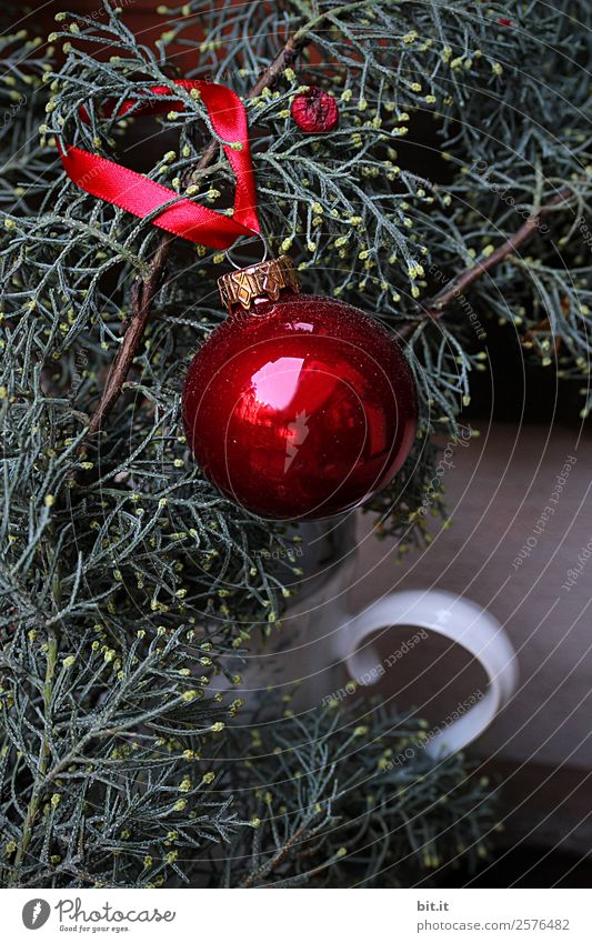 red Christmas tree ball, hangs on the fir branch Living or residing Feasts & Celebrations Christmas & Advent Decoration Glittering Round Green Red Happy