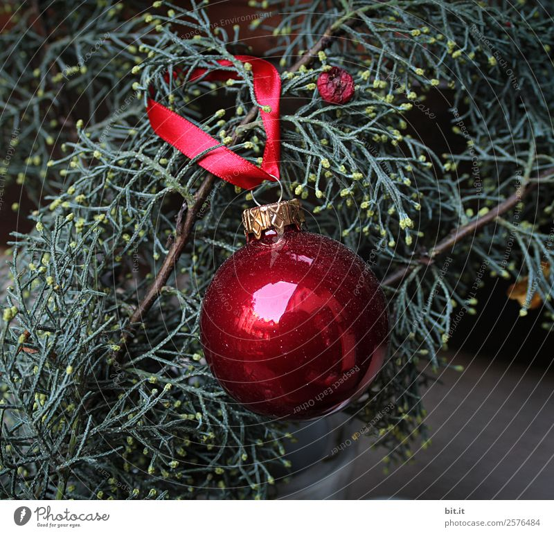 Nostalgic, festive Christmas decoration with delicate fir branches, red bauble and ribbon. Red Christmas bauble hangs shiny on branches. Glowing Christmas bauble hangs on branches in old, nostalgic, rustic style at home, homewards