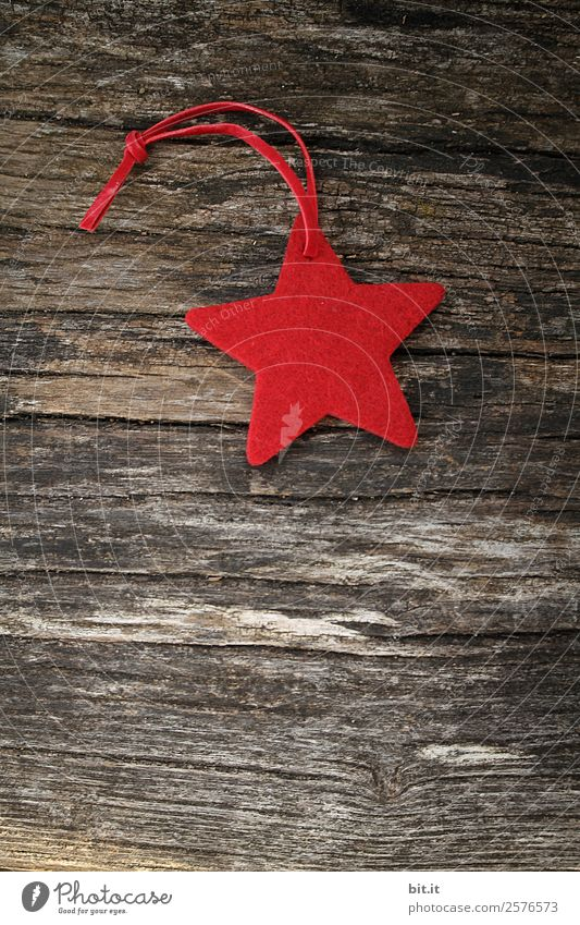 Merry Christmas, dears! Red star made of felt with plaid ribbon, lies on old wood. Red poinsettia, as decoration on rustic brown wooden board. Felt fabric star as a shield, Christmas tree pendant, gift tag for the Advent season.