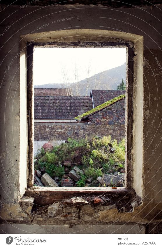 Old Window Wall (building) Wall (barrier) Concrete Natural Broken Derelict Ruin Contour View from a window