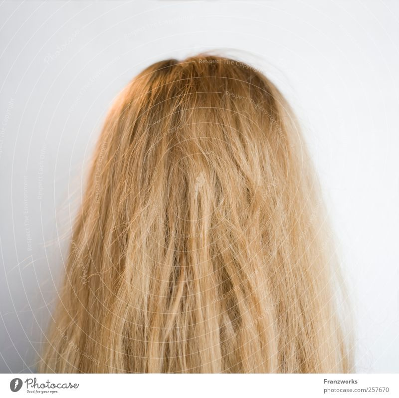Identity I Human being Feminine Hair and hairstyles 1 Art Blonde Long-haired Esthetic Curiosity Complex Nature Back of the head Ask Irritation Foreign