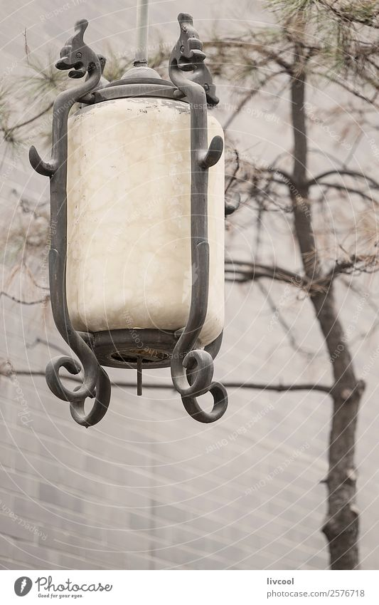 Chinese style street lamp in xian, china Nature Beautiful Tree Clouds Street Architecture Art Lamp Gray Contentment Line Decoration Park Fog Historic Lantern