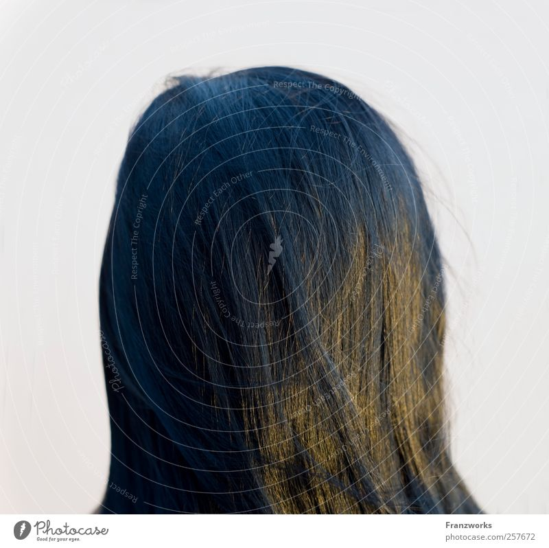 Identity III Human being Feminine Young woman Youth (Young adults) Hair and hairstyles 1 18 - 30 years Adults Black-haired Long-haired Esthetic Curiosity Soft