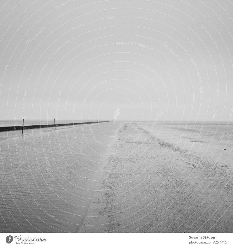 Ocean Coast Waves Hope Longing North Sea Passion Spiekeroog Mud flats Break water Humble Minimalistic Low tide Emotions Black & white photo Water