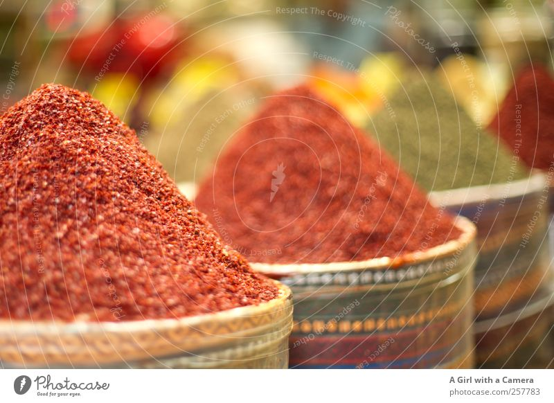 Far-off places Mountain Food Herbs and spices Organic produce Markets Sell Turkey Heap Presentation Gigantic Asia Pepper Chili Nutrition Near and Middle East