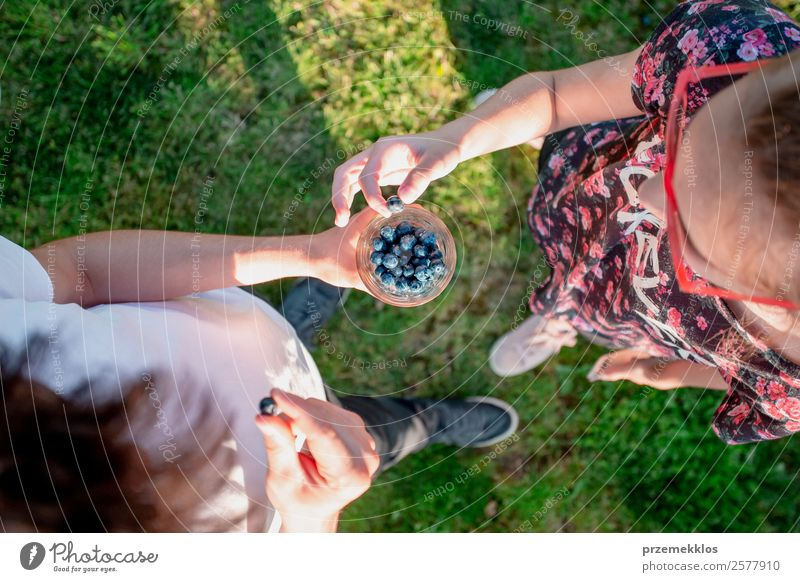 Girl and boy enjoying eating the fresh blueberries outdoors Woman Human being Youth (Young adults) Man Young woman Summer Green Young man Joy Eating Lifestyle