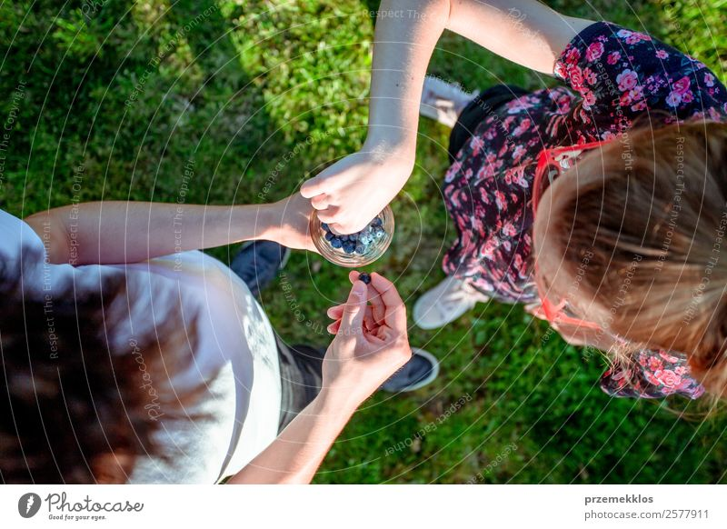 Girl and boy enjoying eating the fresh blueberries outdoors Woman Human being Youth (Young adults) Man Young woman Summer Blue Young man Eating Lifestyle Adults