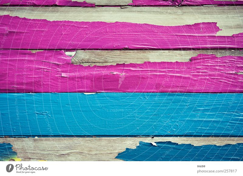 Miss Magenta flew over the sea Facade Wood Sign Line Stripe Dry Yellow White Colour Decline Transience Wall (building) Fence Wooden board Arch