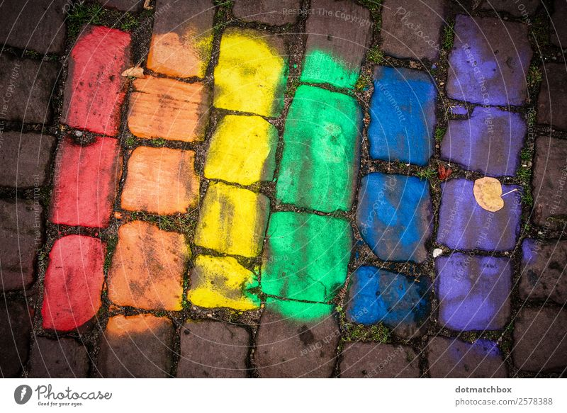 tolerance Town Places Cobblestones Stone Sign Flag Together Blue Yellow Green Violet Orange Red Emotions Acceptance Love Humanity Solidarity Tolerant Fairness