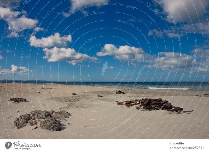 New Zealand 186 Environment Nature Landscape Clouds Beautiful weather Coast Beach Esthetic Contentment Joie de vivre (Vitality) Spring fever Algae catlins Rock