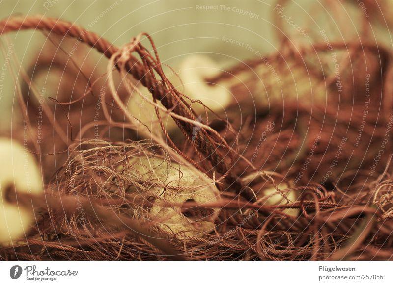 Fishery Fishing net