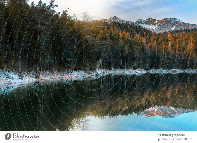 Alpine forest and snowy Alps near Eibsee lake Vacation & Travel Winter Snow Mountain Nature Landscape Weather Beautiful weather Peak Symmetry Bavaria Germany