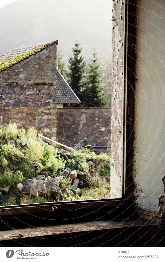 frames Nature Earth House (Residential Structure) Wall (barrier) Wall (building) Facade Window Old Brown Green Window frame View from a window Derelict Brittle