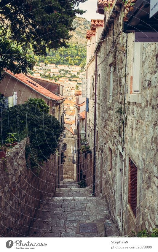 Lane in Dubrovnik/Croatia Vacation & Travel Tourism Trip Sightseeing City trip Summer Summer vacation Europe Town Downtown Old town Deserted