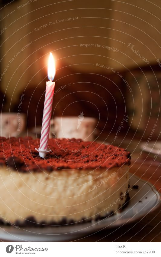 ...and because it's your birthday today. Dough Baked goods Cake To have a coffee Plate Decoration Candle Delicious Beautiful Brown Pink Happy Birthday