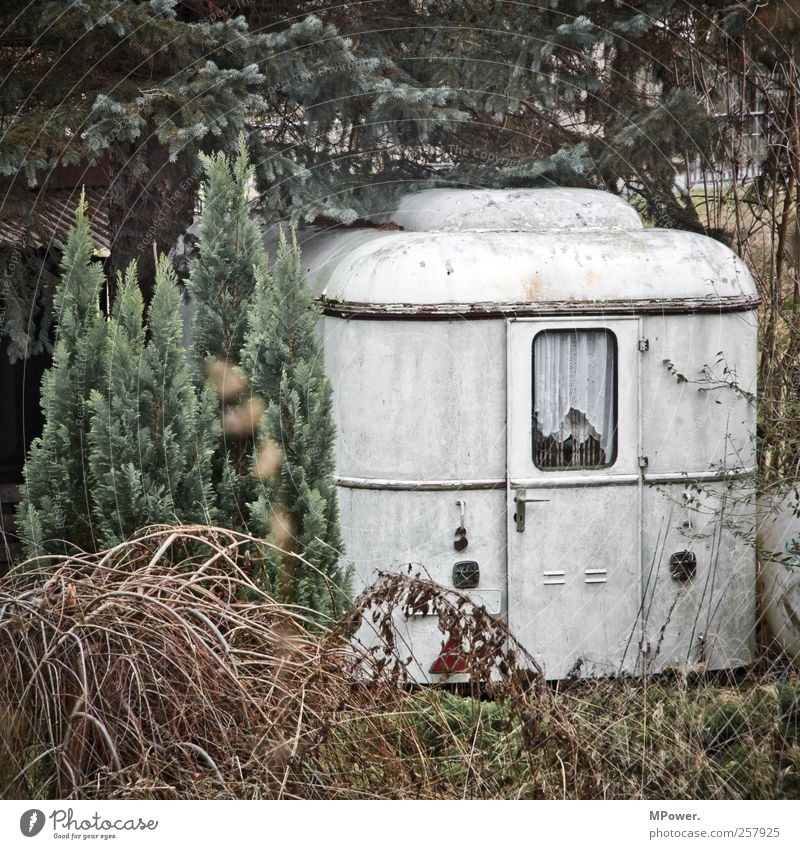 New tenant wanted Hut Old Poverty Caravan Tree Forest Individual Car door Flat (apartment) Bushes Coniferous forest Sparse White Dirty Camping Camping site