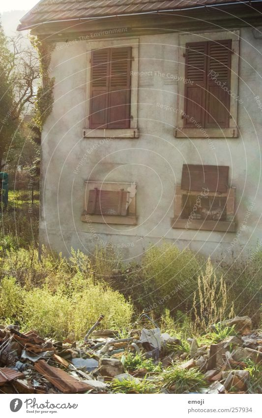 sunny Environment Nature Garden House (Residential Structure) Detached house Hut Wall (barrier) Wall (building) Facade Window Old Warmth Derelict Colour photo