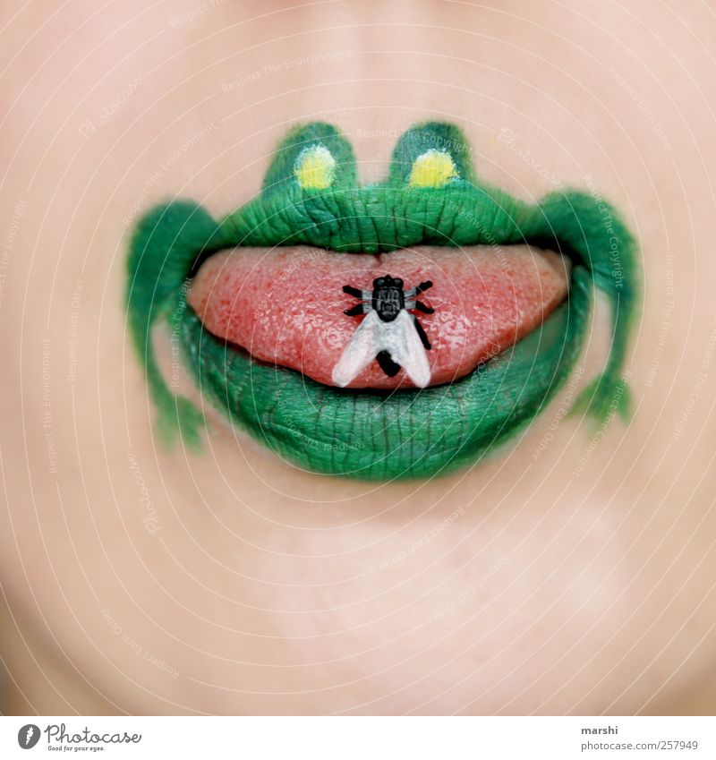 Meal! Skin Face Mouth Lips Animal Frog Animal face 1 Green Fly Tongue Foraging Captured Colour photo Interior shot Graphic Illustration Bright background