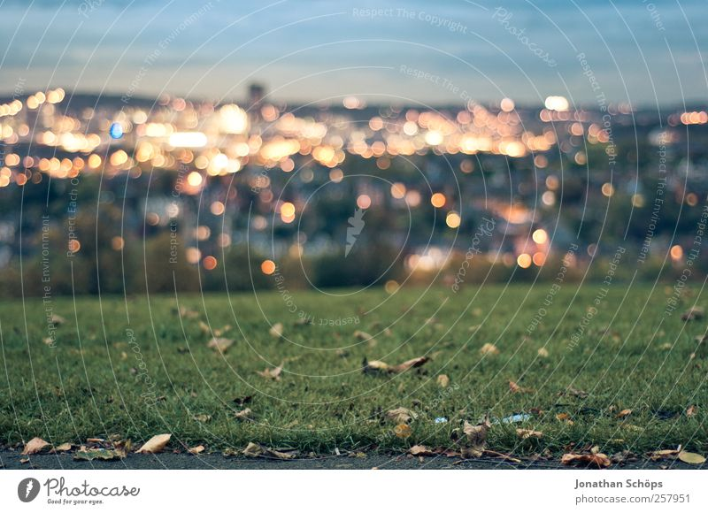 Sky Nature Blue Green City Far-off places Landscape Meadow Autumn Emotions Grass Horizon Park Moody Gold Energy industry