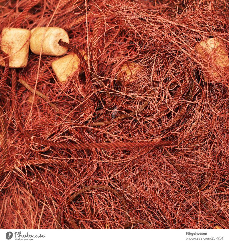Muddled Fishery Fishing net