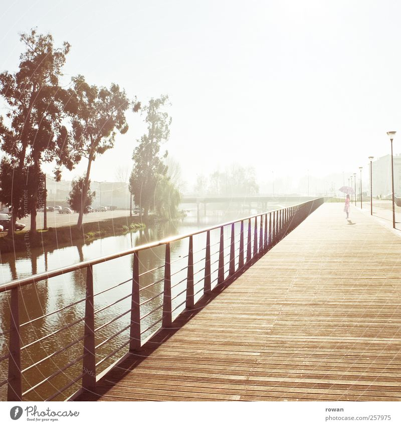 promenade, morning Girl 1 Human being Sunrise Sunset Sunlight River bank Manmade structures Architecture Promenade Wooden floor Handrail Water Tree Sepia