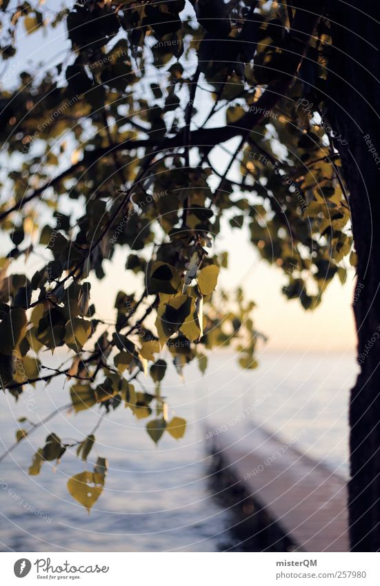 by the lake. Nature Esthetic Contentment Calm Remote Lake Garda Tree Jetty Leaf Idyll Vacation & Travel Vacation mood Vacation photo Vacation good wishes