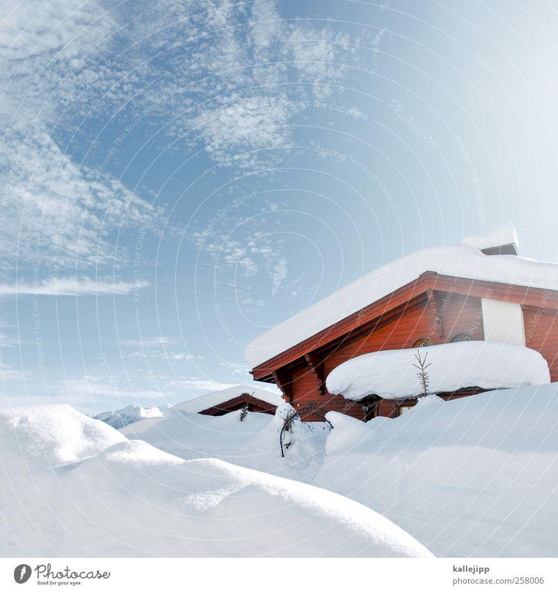 cotton Leisure and hobbies Environment Nature Landscape Winter Hill Alps Mountain Peak Snowcapped peak Village Living or residing Hut Cold Switzerland