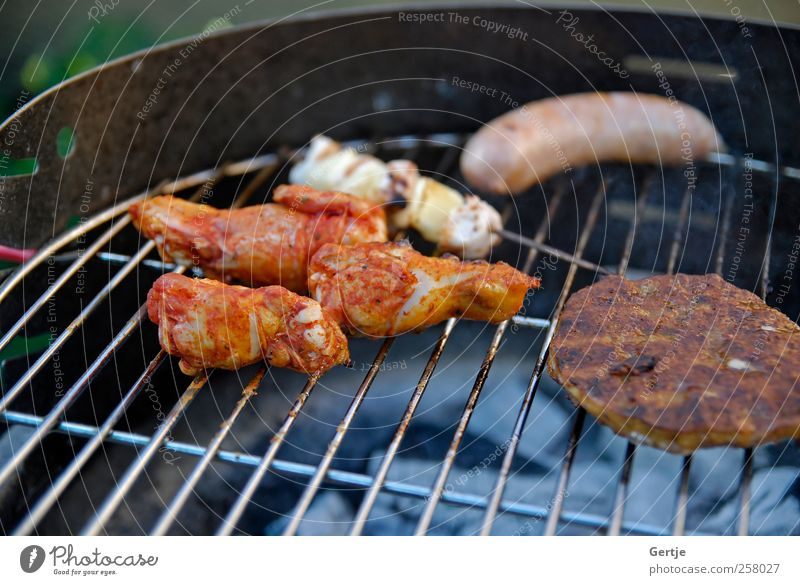 Barbeque party with family Meat Summer Ashes Beef Chicken Flame Glow Hamburger Heat picnic Pork Roast Roasted shish sizzling Steak Tasty Colour photo
