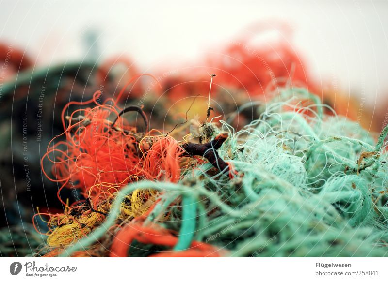 Not another fishing net picture Environment Fishery Fishing net Colour photo Exterior shot Day Close-up Multicoloured Copy Space top Trash Remainder