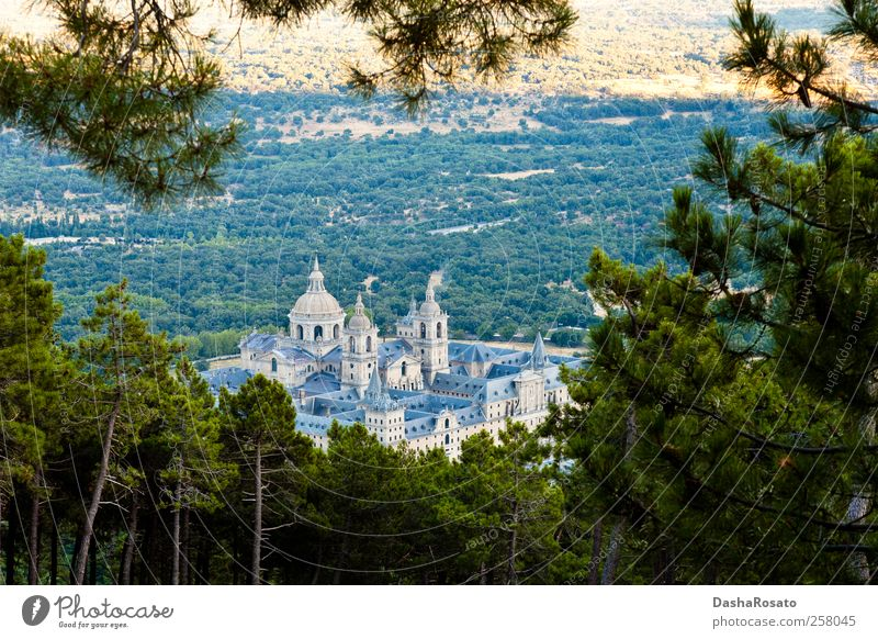San Lorenzo de El Escorial Monastery From Above Tree Plant Vacation & Travel Summer Architecture Building Religion and faith Places Tourism Church