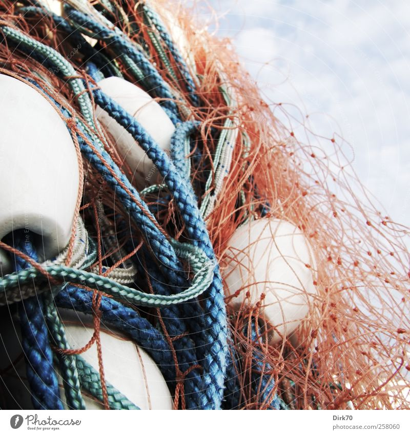 Blue White Red Ocean Nutrition Food Rope Fish Network Plastic Harbour String Catch Hunting Chaos