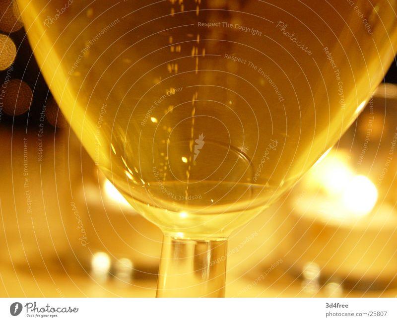 Barley juice I Beer Yellow Bubbling Alcoholic drinks Macro (Extreme close-up) sparkling Glass barley juice