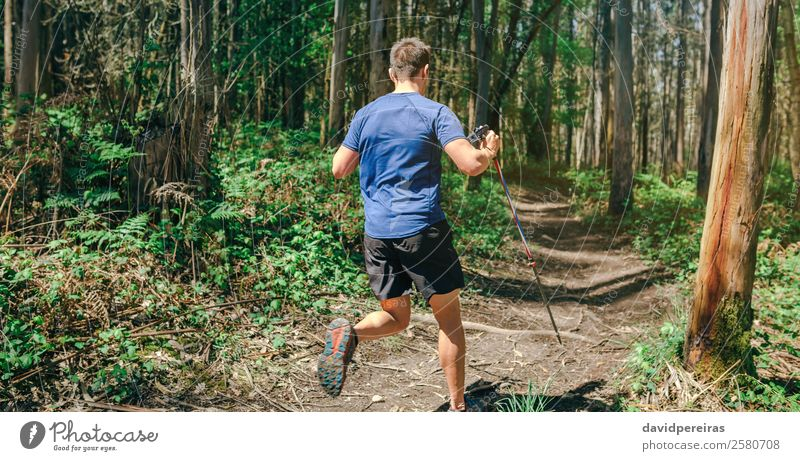 Man participating in trail race Lifestyle Adventure Sports Human being Adults Nature Tree Forest Lanes & trails Fitness Authentic Speed Effort Energy