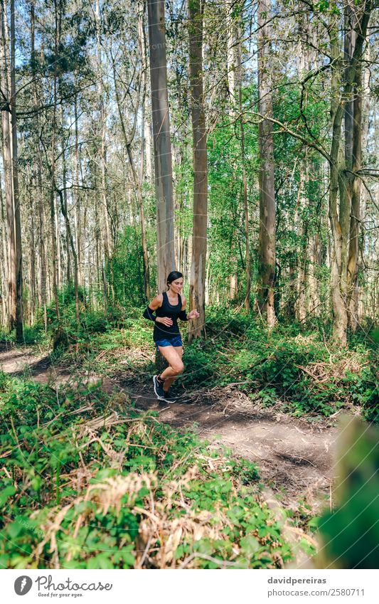 Young woman doing trail Lifestyle Adventure Sports Human being Woman Adults Nature Tree Forest Lanes & trails Sneakers Fitness To enjoy Authentic Speed Effort