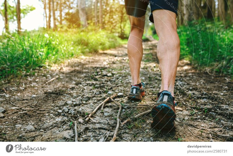 Feet of man participating in trail race Lifestyle Adventure Mountain Sports Climbing Mountaineering Human being Man Adults Nature Tree Forest Lanes & trails
