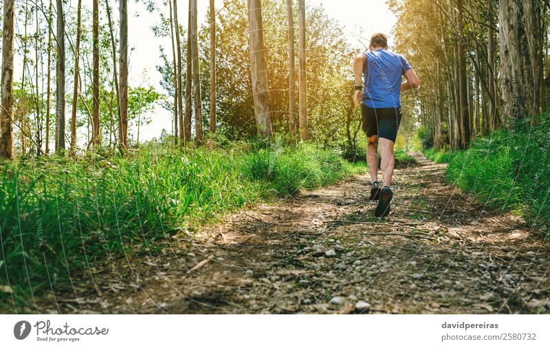 Unrecognizable man participating in trail race Lifestyle Adventure Mountain Sports Climbing Mountaineering Human being Man Adults Nature Tree Forest