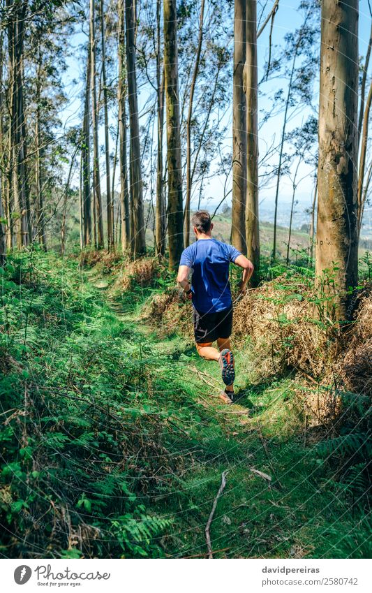 Young man doing trail Lifestyle Adventure Mountain Sports Human being Man Adults Couple Nature Tree Forest Lanes & trails Fitness Authentic Speed Effort Energy