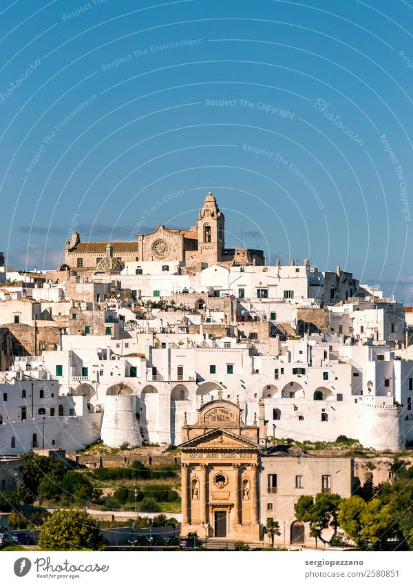 Panoramic view of the white village of Ostuni in Salento Nature Old Blue Town Beautiful White Landscape Joy Lifestyle Funny Coast Exceptional Swimming & Bathing